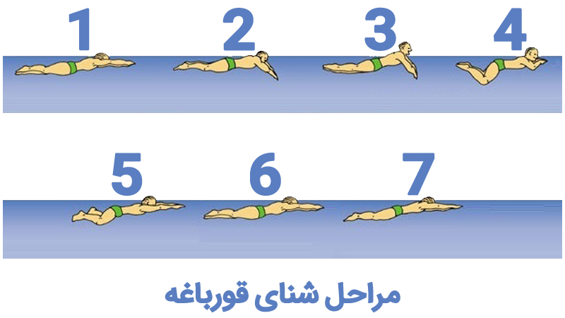 آموزش تصویری شنای قورباغه در استخر